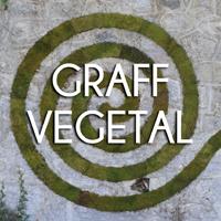 GRAFF (1)