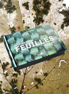 FEUILLES pub blog 1