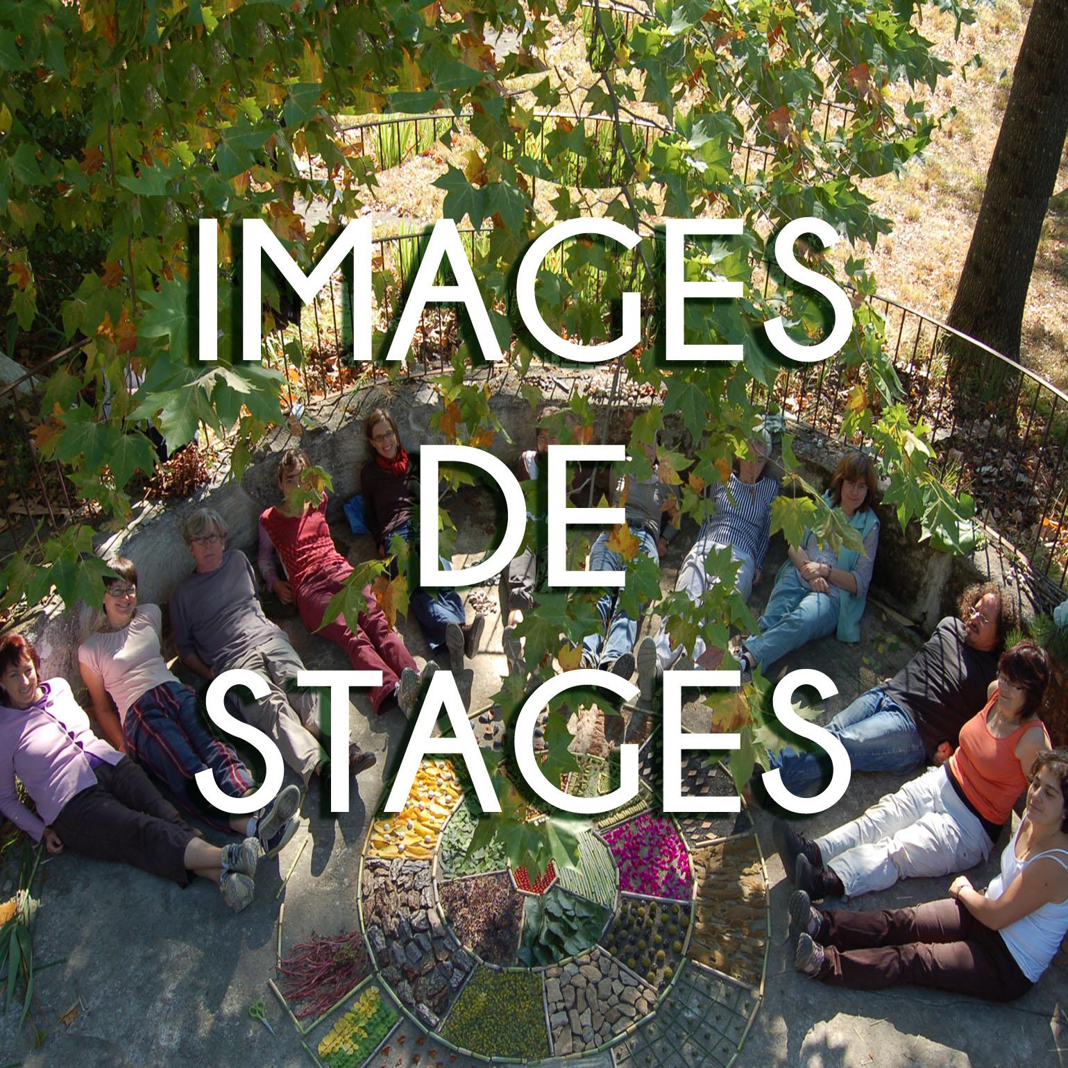 IMAGES DE STAGES