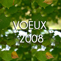 VOEUX 2008
