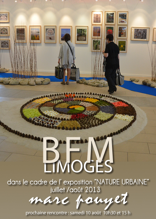 ARTICLE  APRES EXPOSITION BFM LIMOGES 2013 SIMPLE