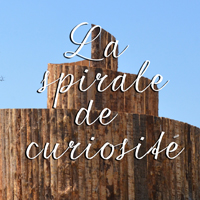 SPIRALE DE CURIOSITE ETE