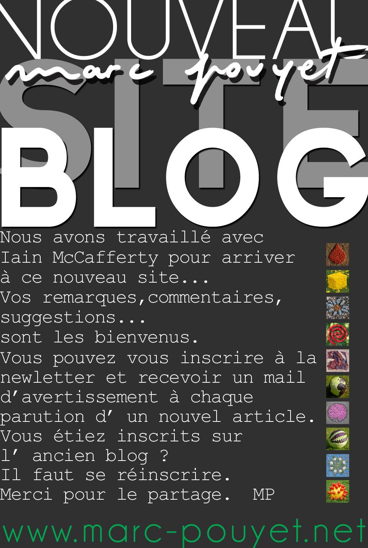 ARTICLE  LE NOUVEAU BLOG SITE newletter