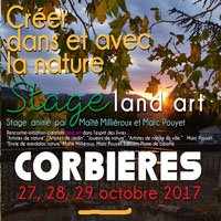 CARRE STAGE AUTOMNE 2017