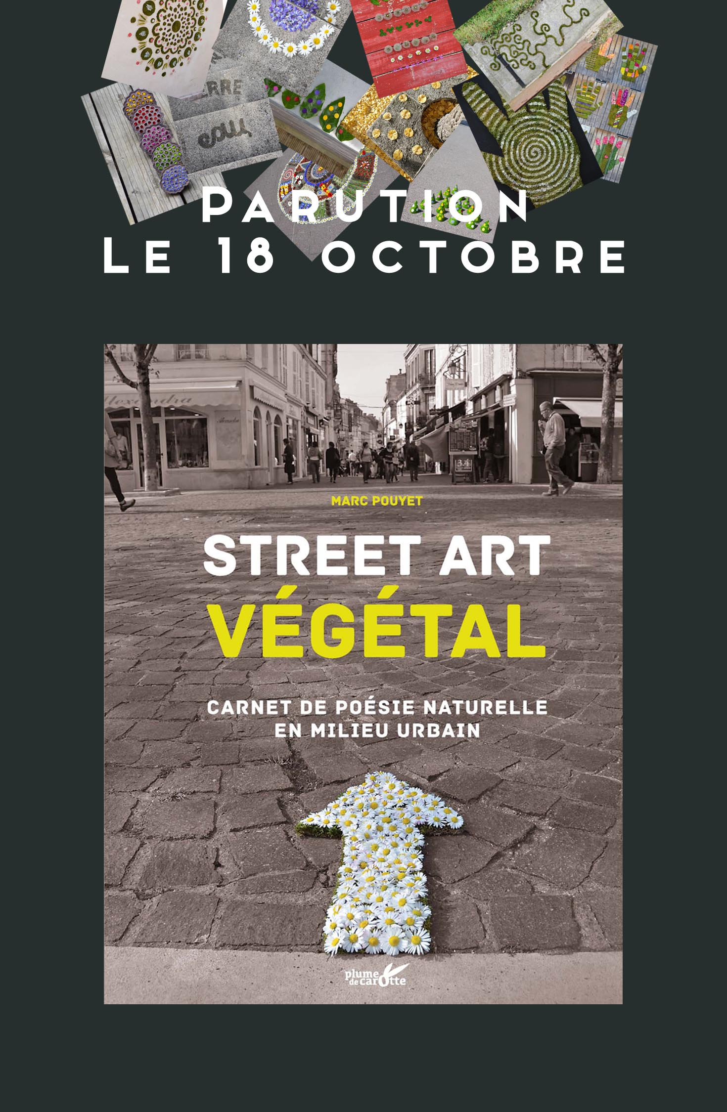 Article Parution STREET ART VEGETAL 3 M