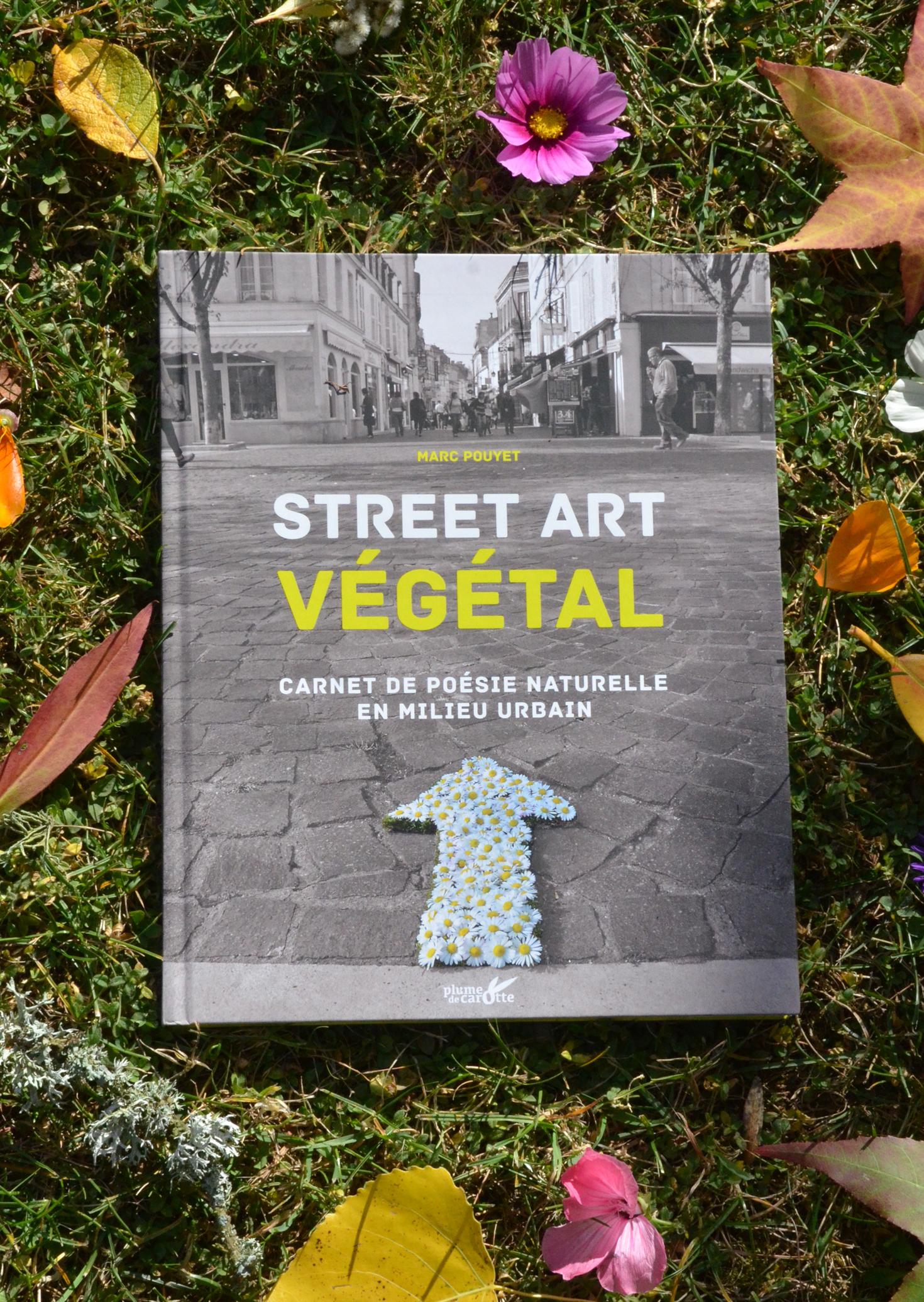 Article  Sortie STREET ART
