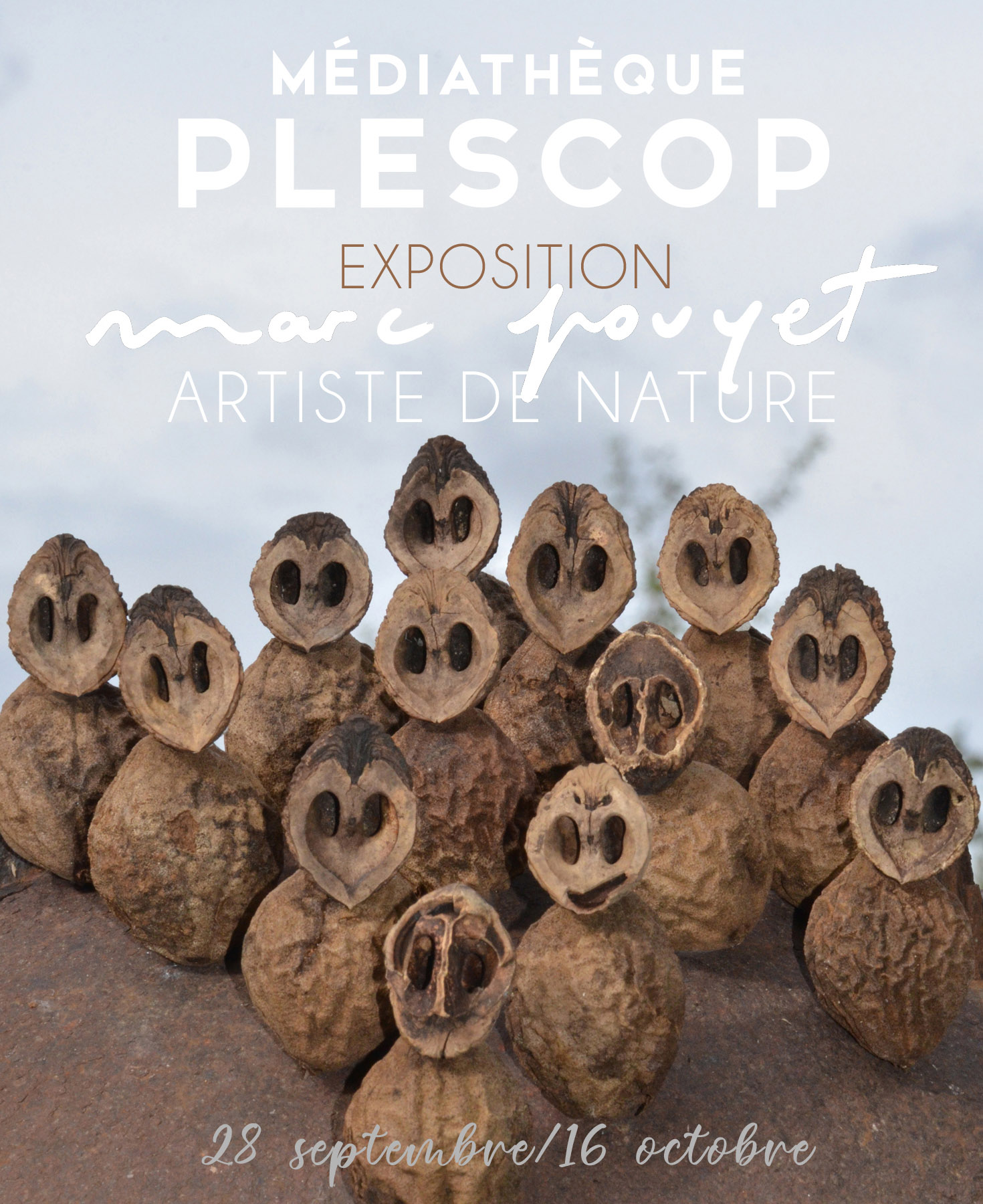 ARTICLE EXPOSITION PLESCOP M