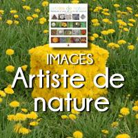 CARRE ARTISTE DE NATURE