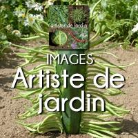 CARRE ARTISTE DE JARDIN
